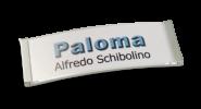 Paloma-Win, edelstahloptik galvanisiert, 22 mm hoch