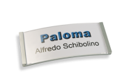 Namensschilder Paloma-Win,edelstahloptik galvanisiert,  30 mm hoch