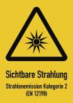 Warnzeichen - Symbol und Text nach Ihren Angaben, Alu, 210x297 mm